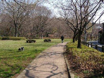静かな公園でじいじと犬