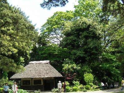 長閑な庭園