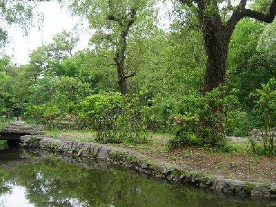 石神井公園で