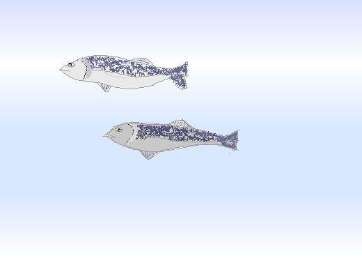 鮭の悲劇挿絵